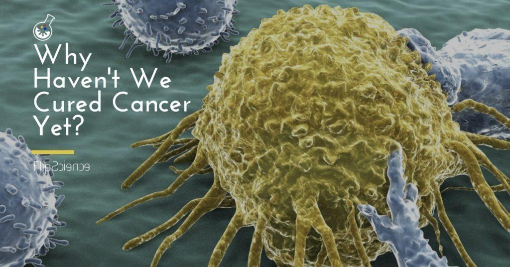 cancer cancer cell cure