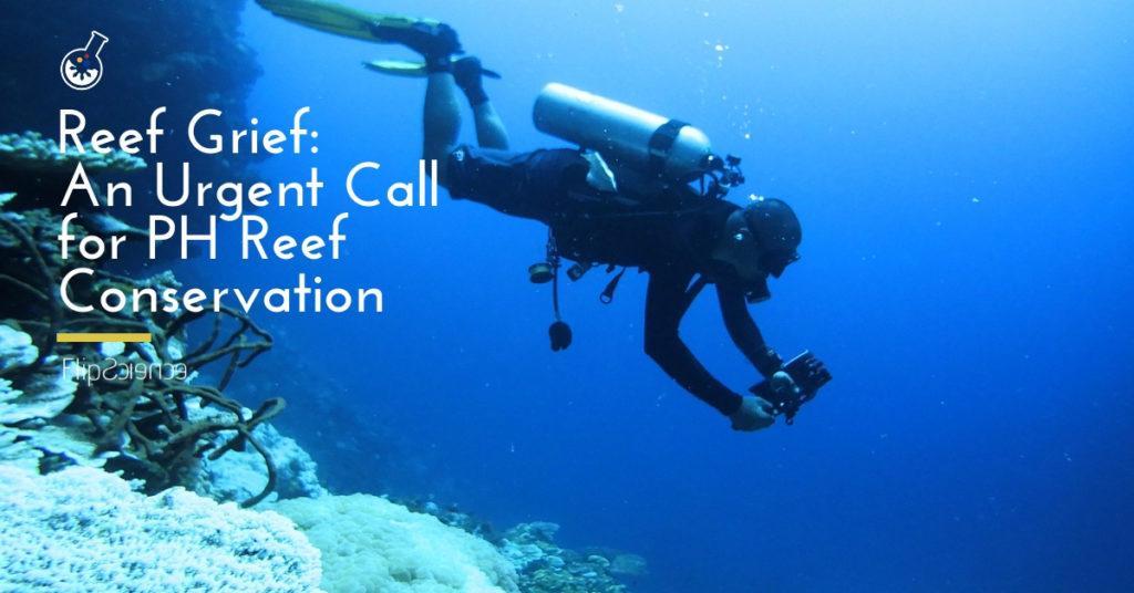 reef, philippines, bleaching