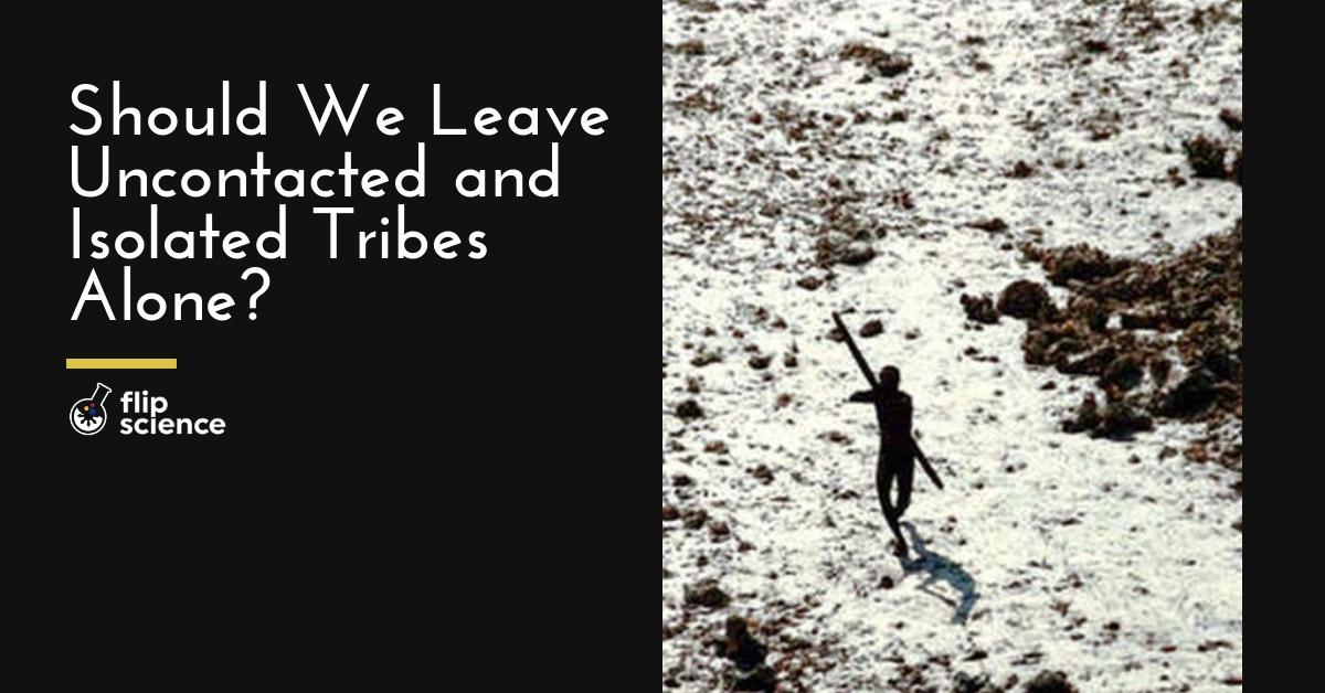 uncontacted, isolated, tribe, tribes