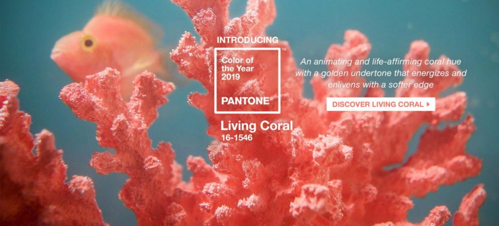 living coral, pantone, 2019