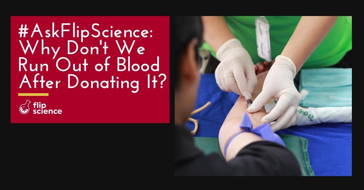 askflipscience, flipscience, blood, donate