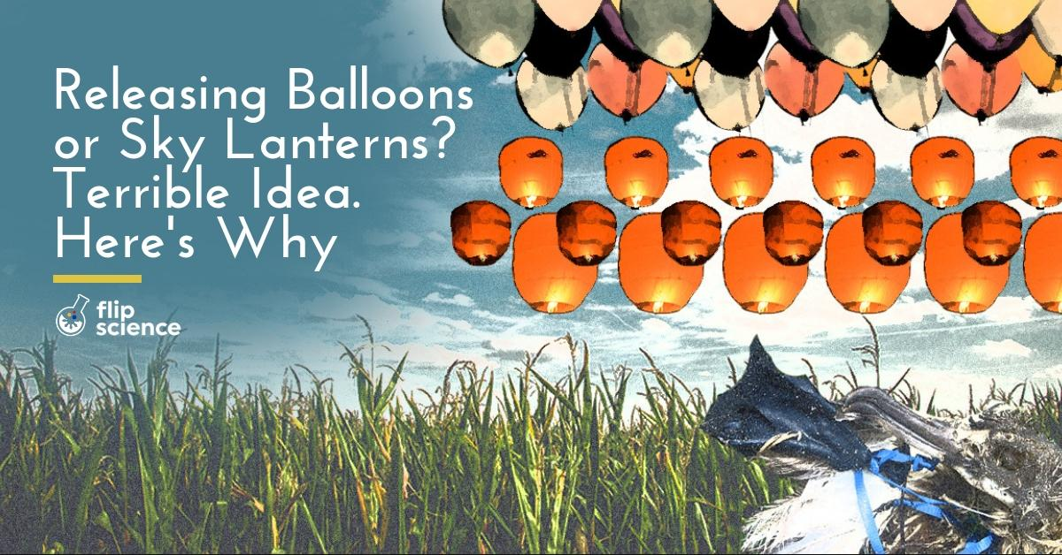sky lanterns, balloons, pollution