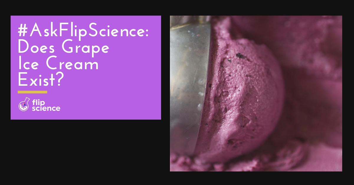 grape, ice cream, askflipscience, flipscience