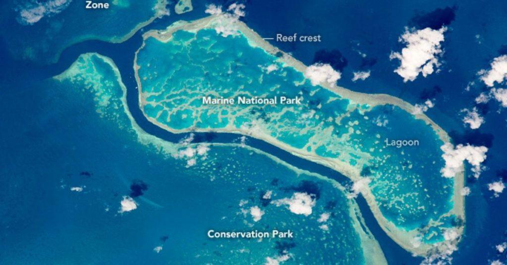 great barrier reef, flipfact, flipfacts, flipscience