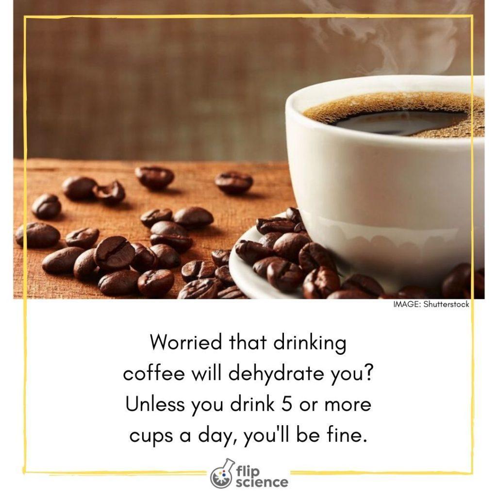 coffee, flipfact, flipfacts, flipscience
