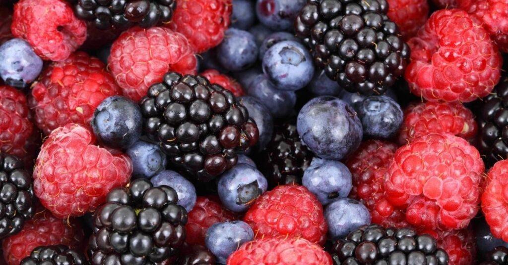 flipfact, flipfacts, flipscience, berry, berries, strawberry, blueberry, blackberry, raspberry, strawberries, blueberries, blackberries, raspberries